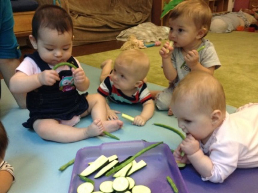 Infants Veggies Sampling